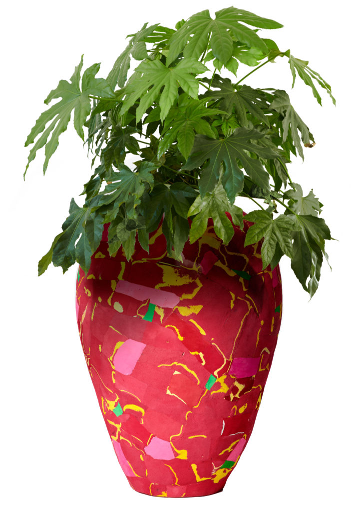 plant in flipflop vase red kopie